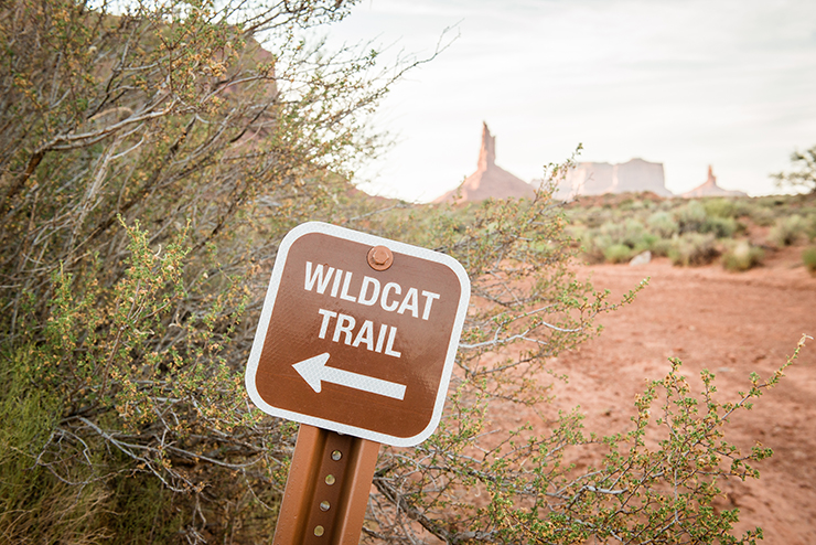 Wildcat-trail-mark